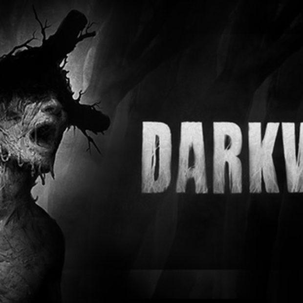 Студия Acid Wizard Studio добровольно выложила полную версию игры Darkwood на торрент-трекер