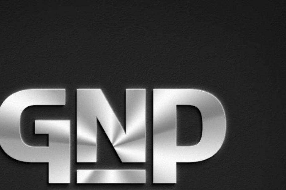 Портфолио: GNP