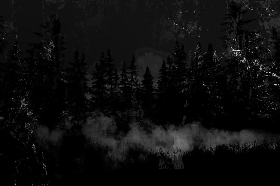 Послание из темноты: Поляна Лотта Невилла